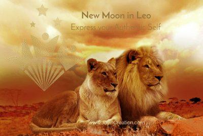 New Moon Lion