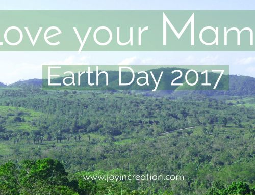 Love your Mama – Earth Day 2017