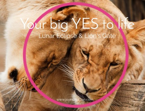 Your big yes to life – Lunar Eclipse & Lion's Gate