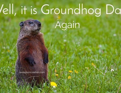 Well it is Groundhog Day…again